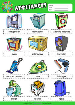 Appliances Picture Dictionary ESL Vocabulary Worksheet