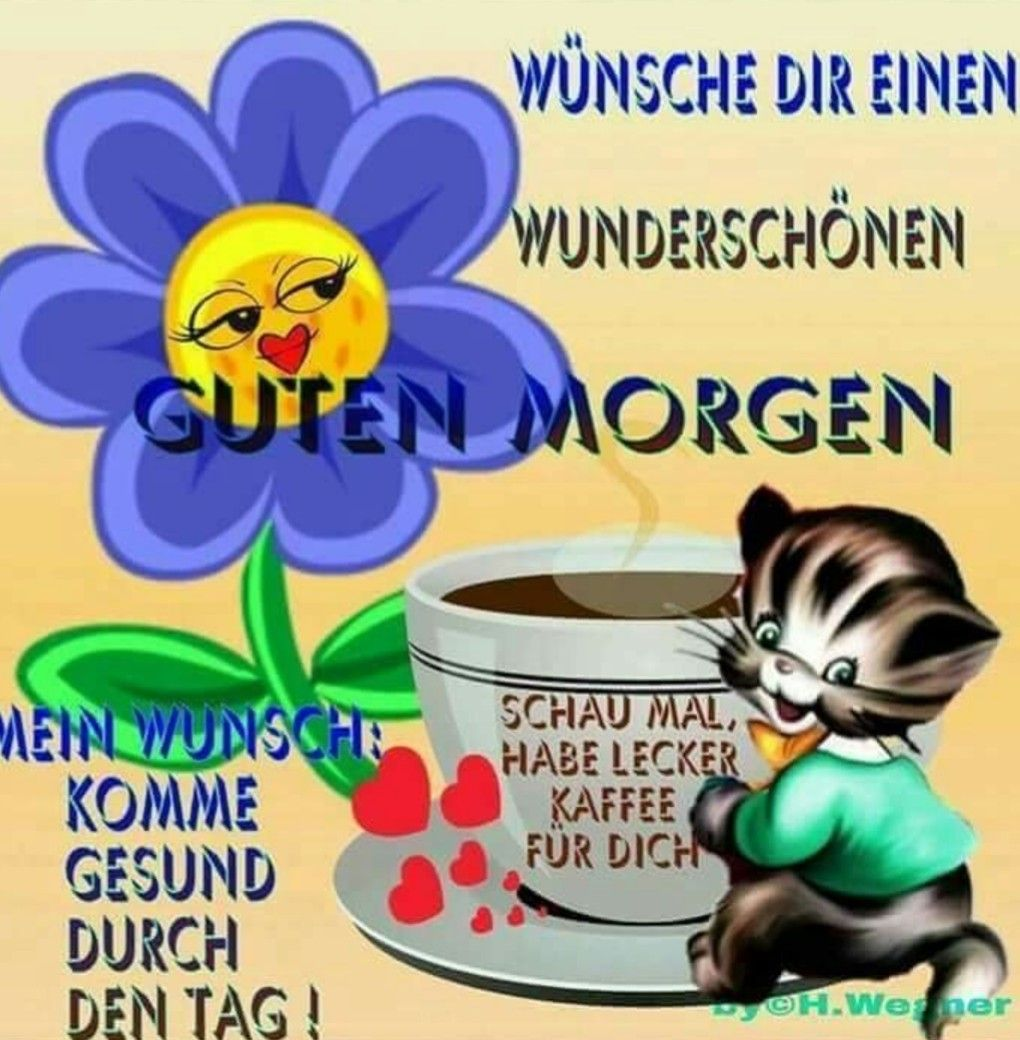 Pin Von Ingrid Rabe Auf Guten Morgen Lustig Lustige Guten