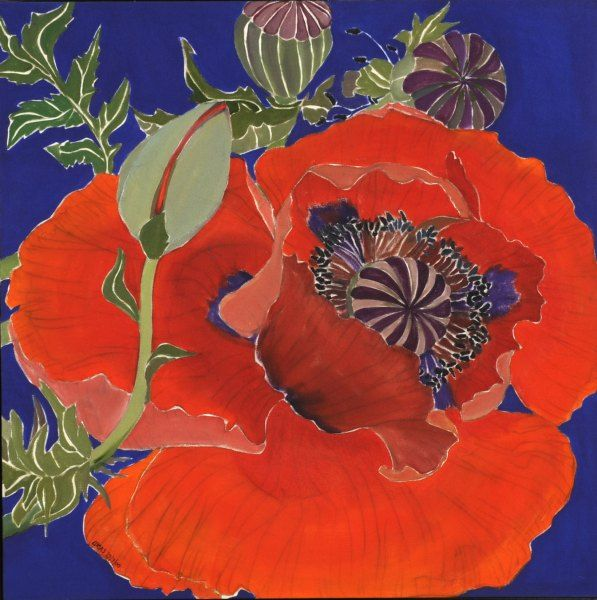 Helen Lucas ~ Poppy On Blue
