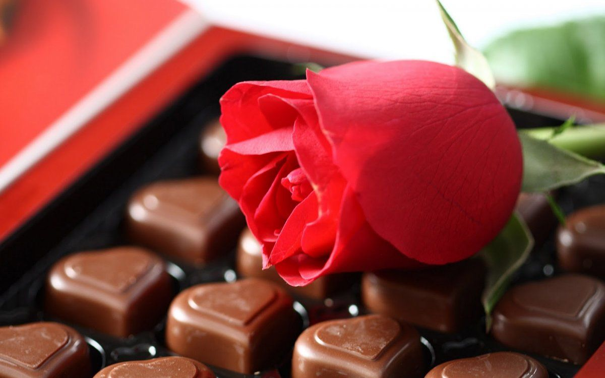 chocolate with rose | hhmmmm... chocolate ;) | Pinterest | Chocolate