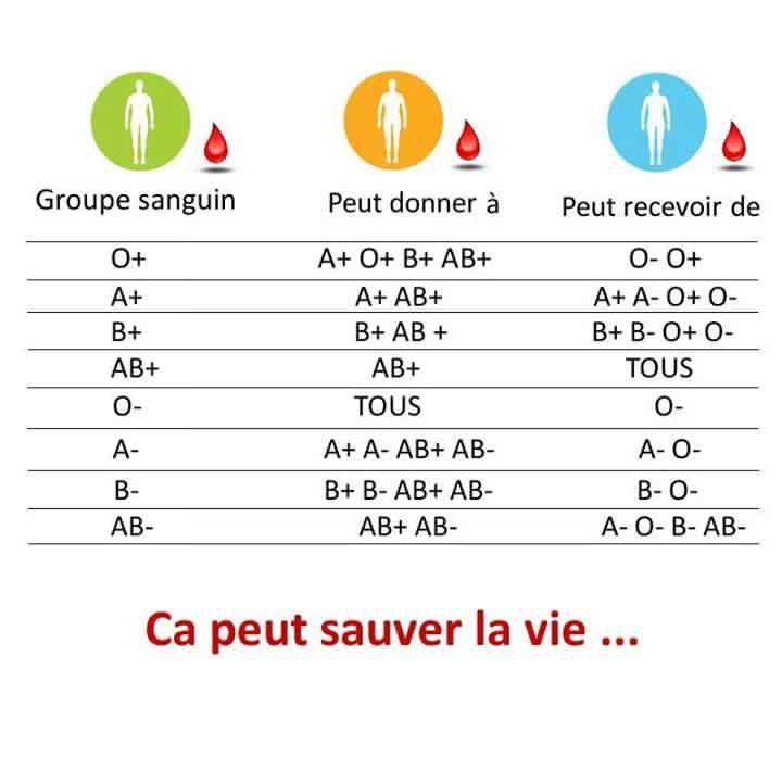 ab régime sanguin positif