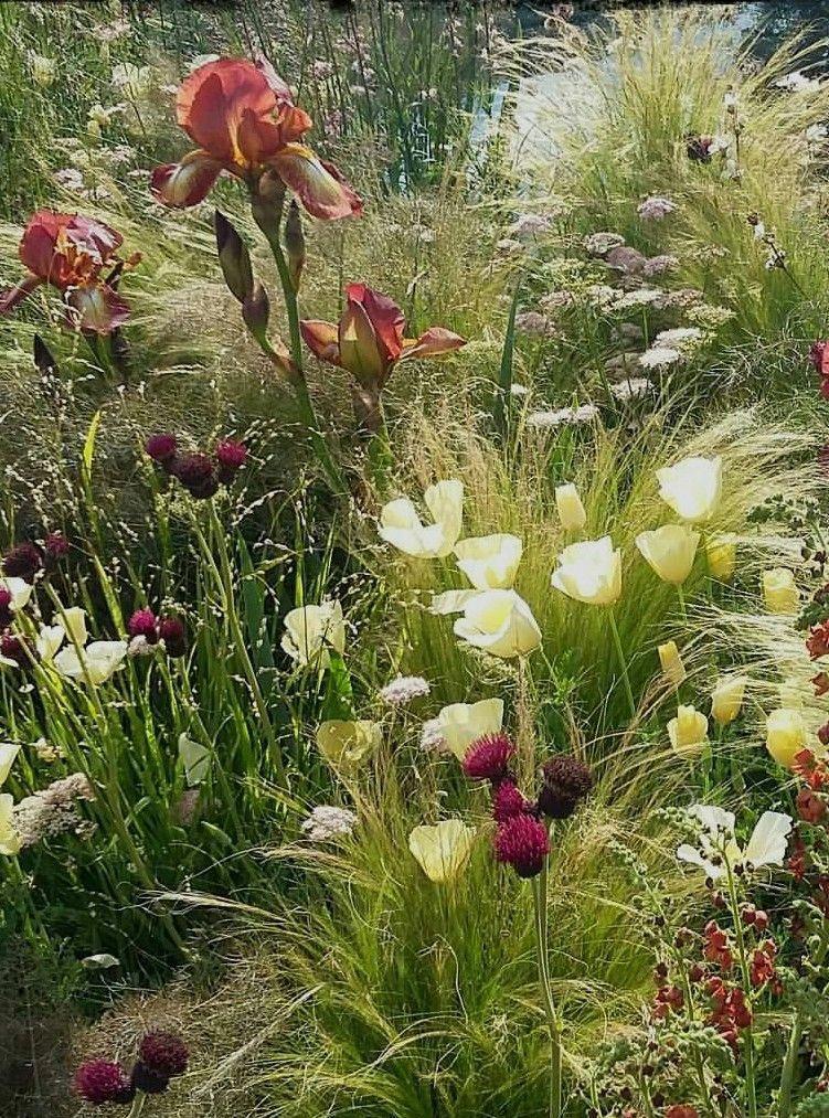 Organic Gardening Encyclopedia OrganicGardeningTechniques Refferal 7482856780 is part of Garden -
