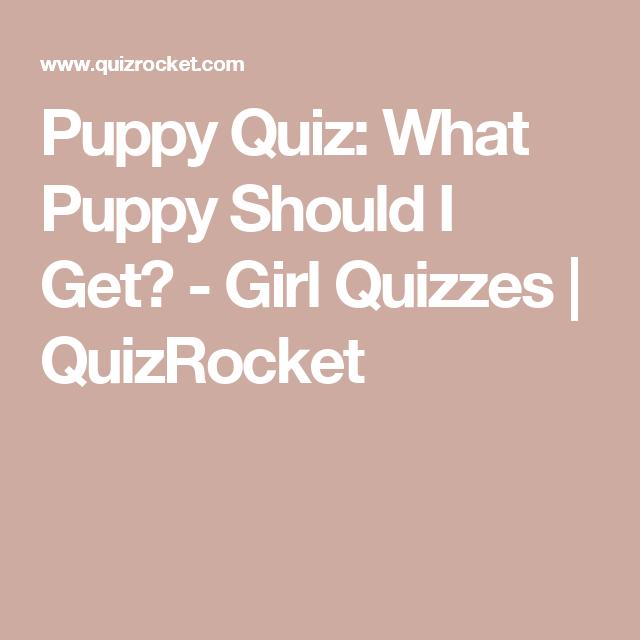 Quizrocket