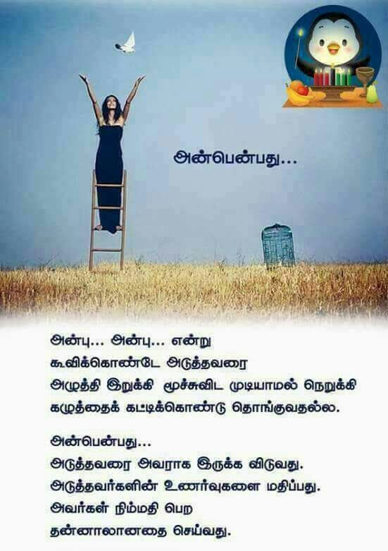 Pin By Viji Chidam On Tamil Quotes Photo Album Quote Tamil Love