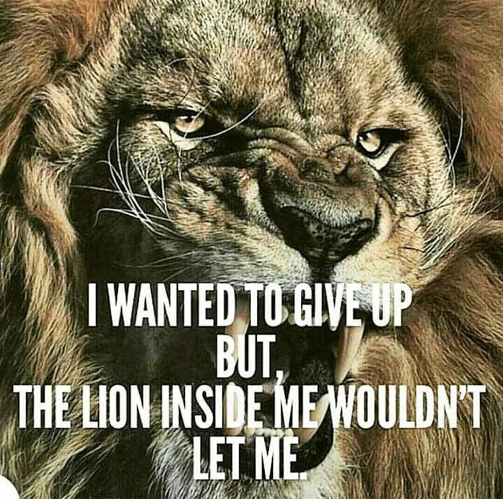 Pin By Gladys Tedja On Inspiration In Images Words Lion Quotes Warrior Quotes Inspirational Quotes Motivation