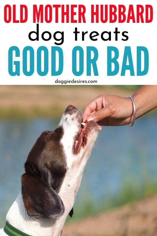 Dog Treats Oldmotherhubbard Review Canine Petowners Good