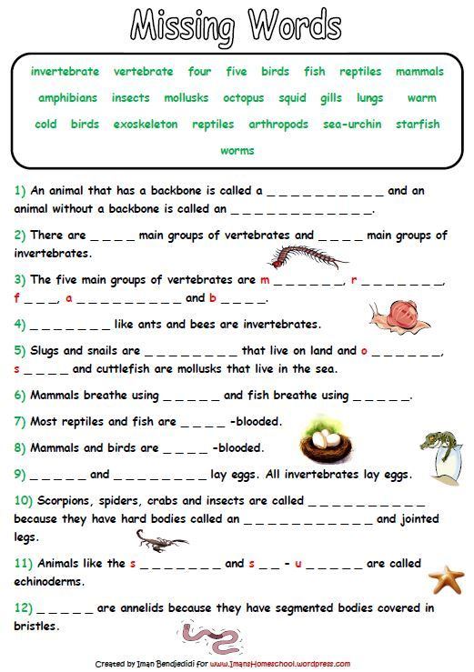 Lively image with free printable worksheets on vertebrates and invertebrates