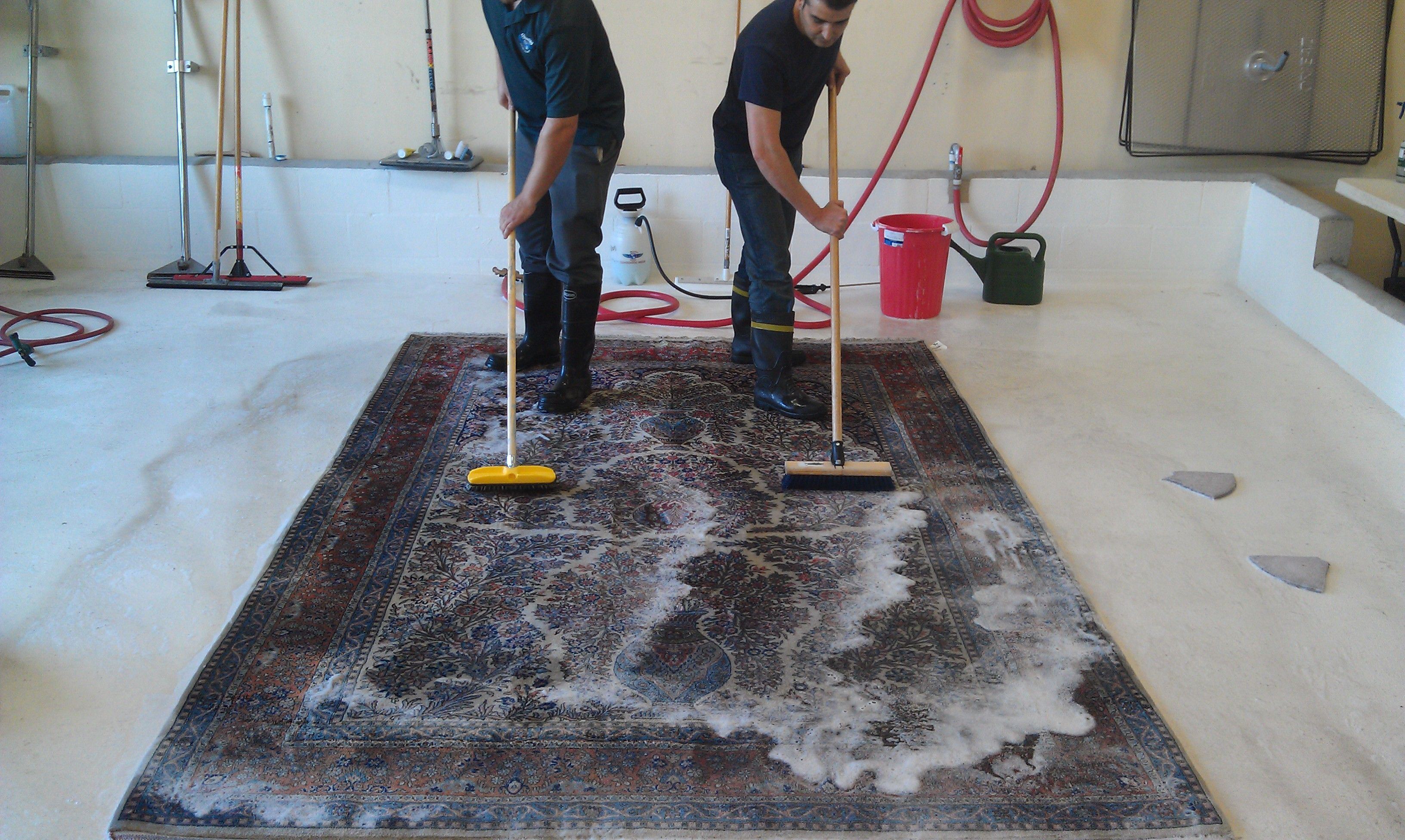 Best Ever Carpet Cleaning Sydney Method