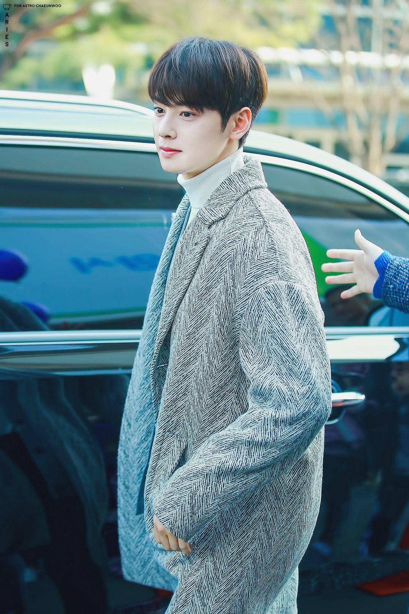 Aries Cha Eun Woo Astro Cha Eun Woo Eun Woo Astro