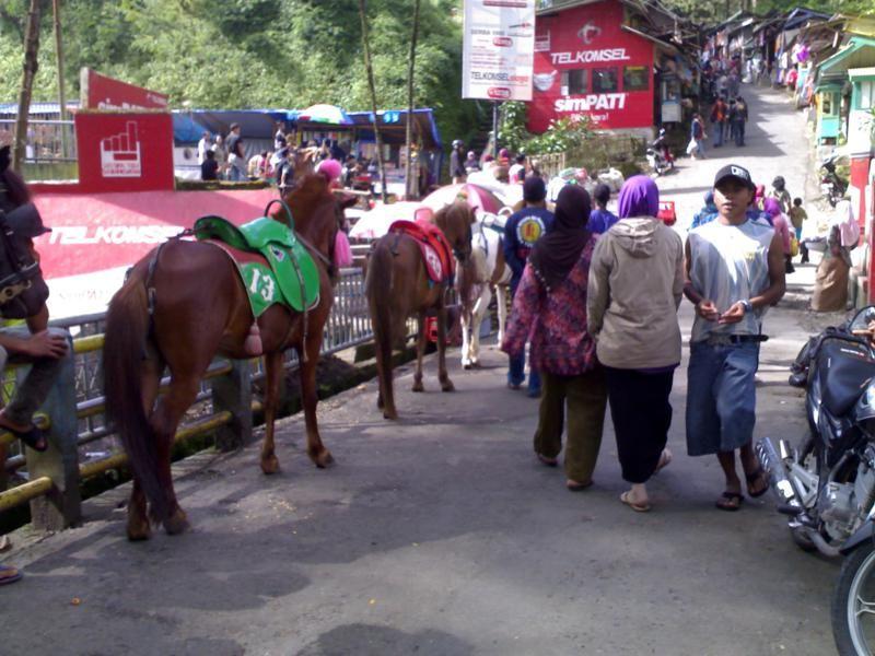 Jawa Tengah, Tempat Wisata Guci Tegal: Guci Indah Tegal Tempat Wisata Keluarga