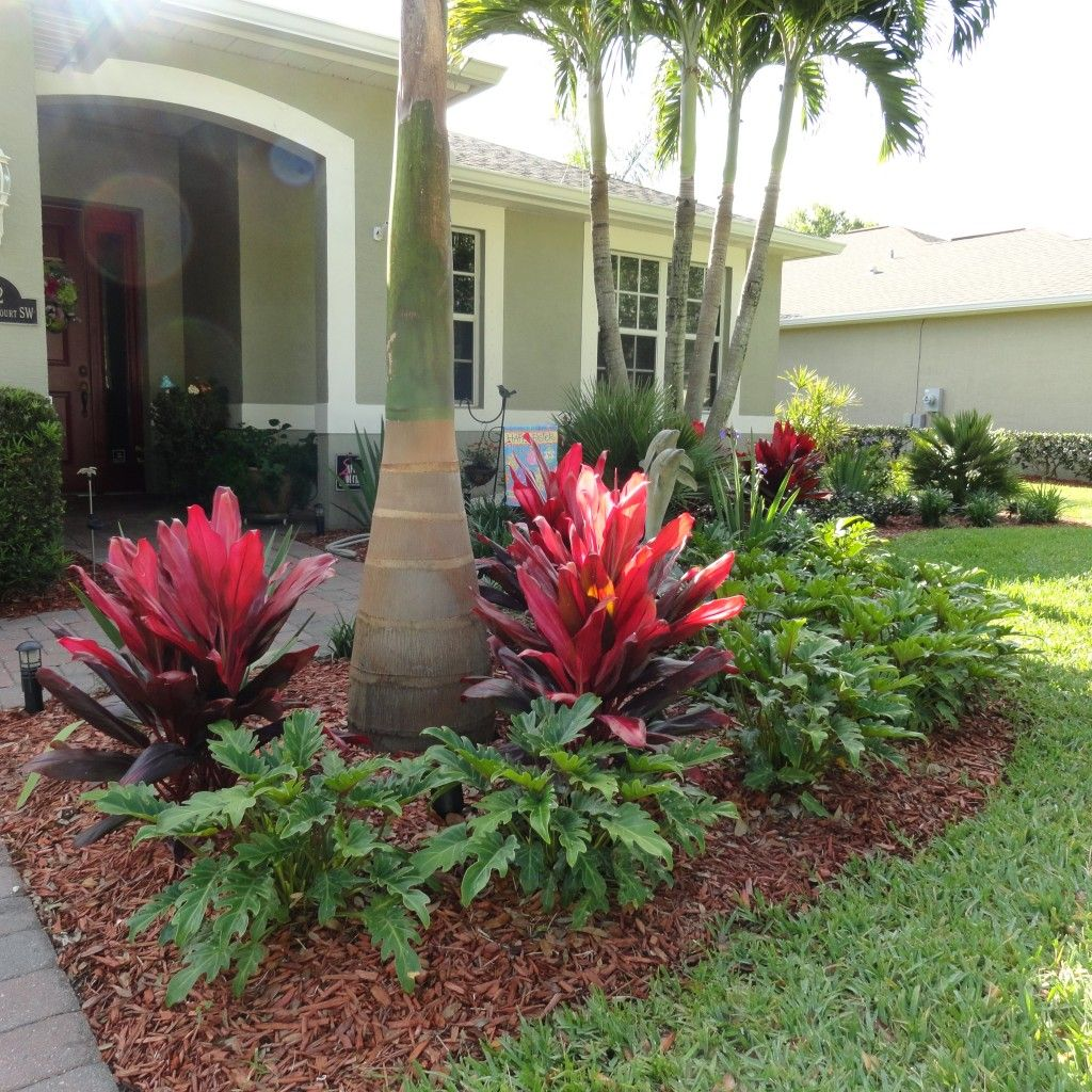 Eisert Side Front Small Front Yard Landscaping Tropical
