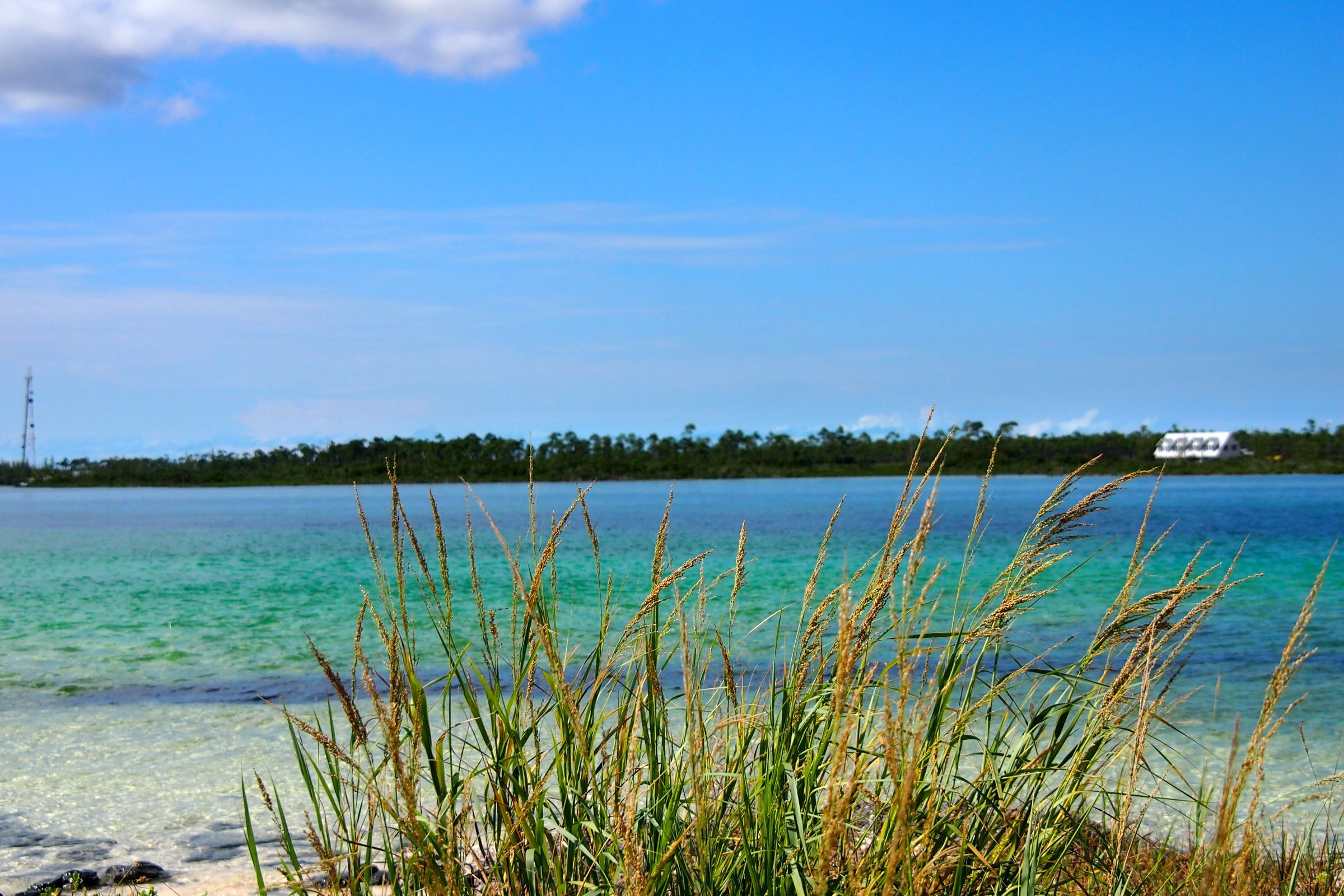 Grand Bahama Island, just a stone's throw away from Deep Water Cay | SBPR