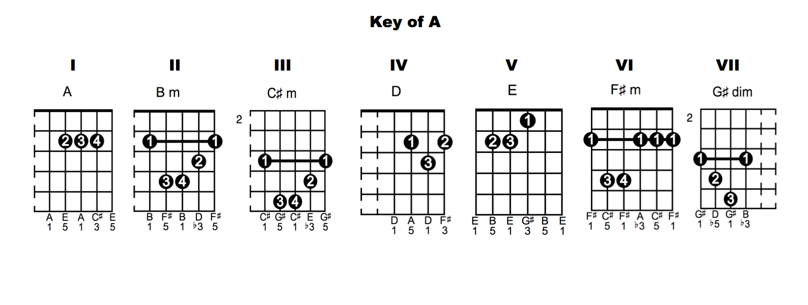 Guitar Chords In The Key Of D Google Search Strummin