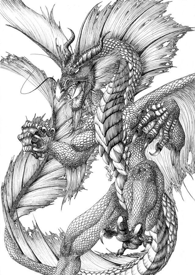 Dragon Dragon Artwork Dragon Drawing Dragon Sketch