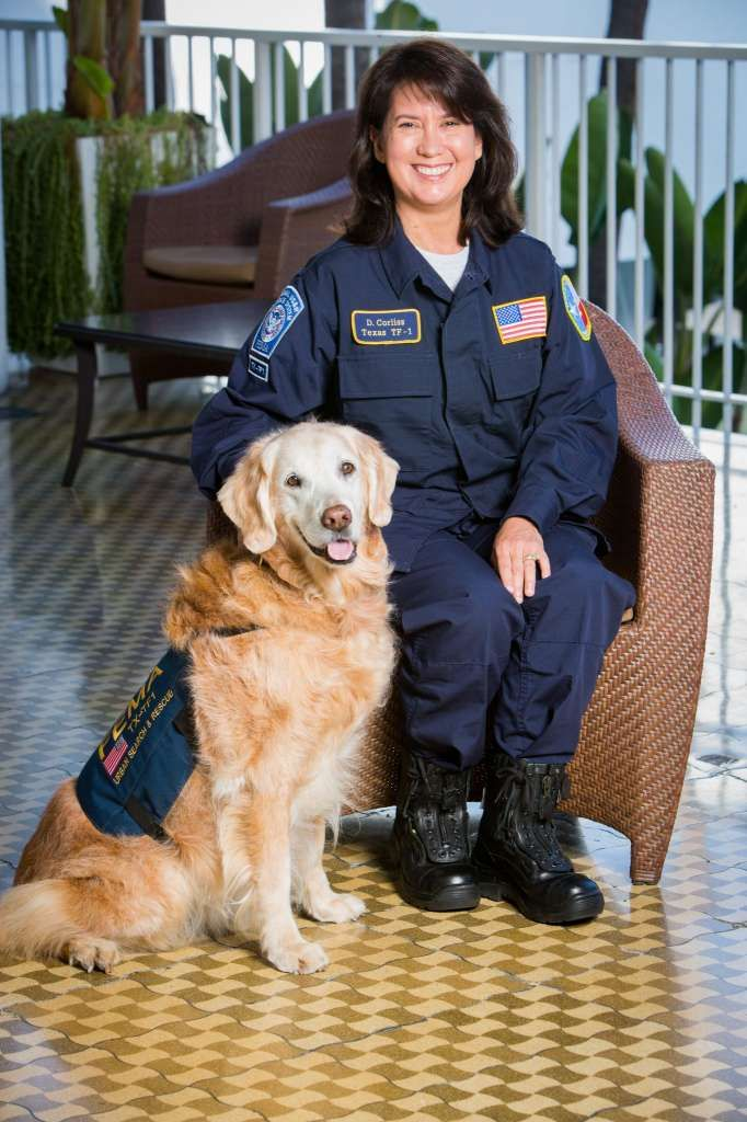 Last Known 9 11 Search Dog Euthanized In Houston Area Search And Rescue Dogs Dog Search Socializing Dogs