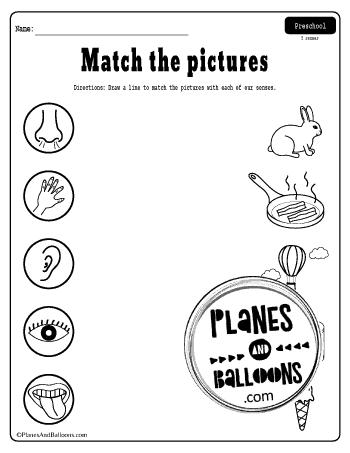 Free Printable Five Senses Worksheets Pdf For Preschool And Kindergarten In 2020 Five Senses Worksheet My Five Senses Printable Preschool Worksheets
