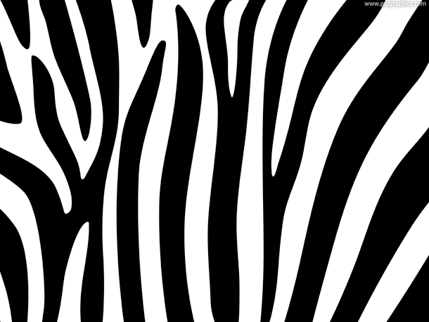 Zebra Stripe Background Pattern Zebra Striped Wallpaper Striped