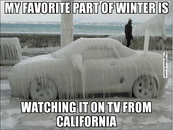 Image result for funny california memes fall