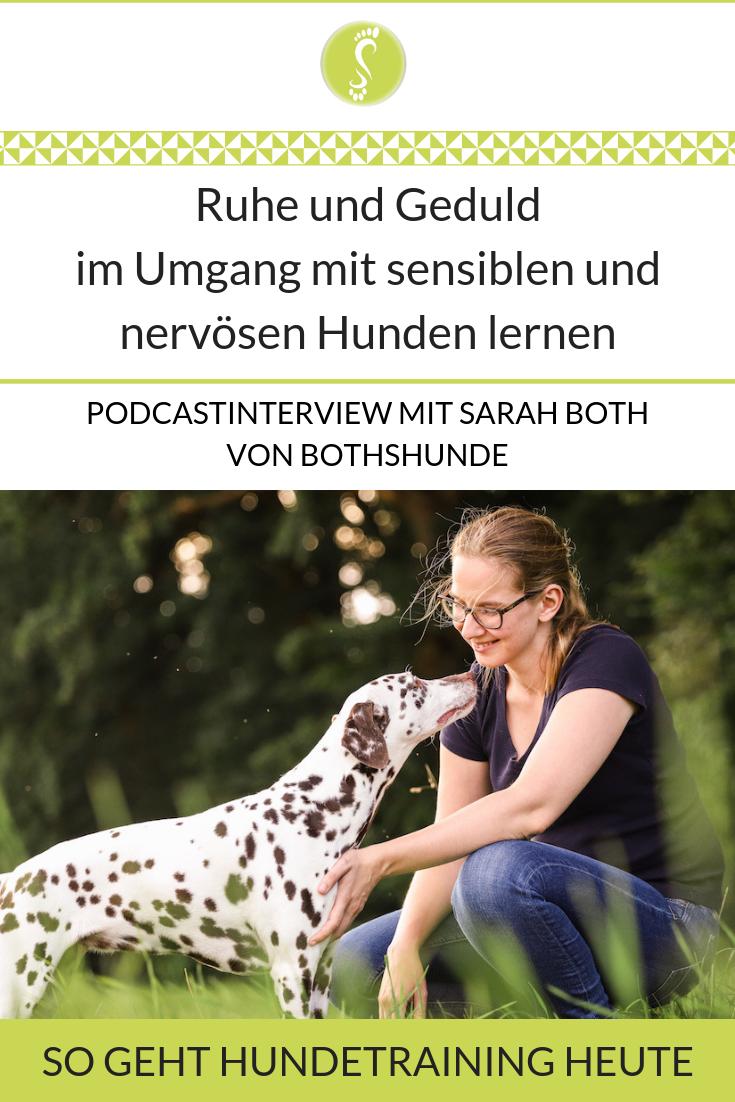 Ruhe Und Geduld Im Umgang Mit Sensiblen Und Nervosen Hunden Lernen Mit Bildern Hundchen Training Hunde Hundetraining