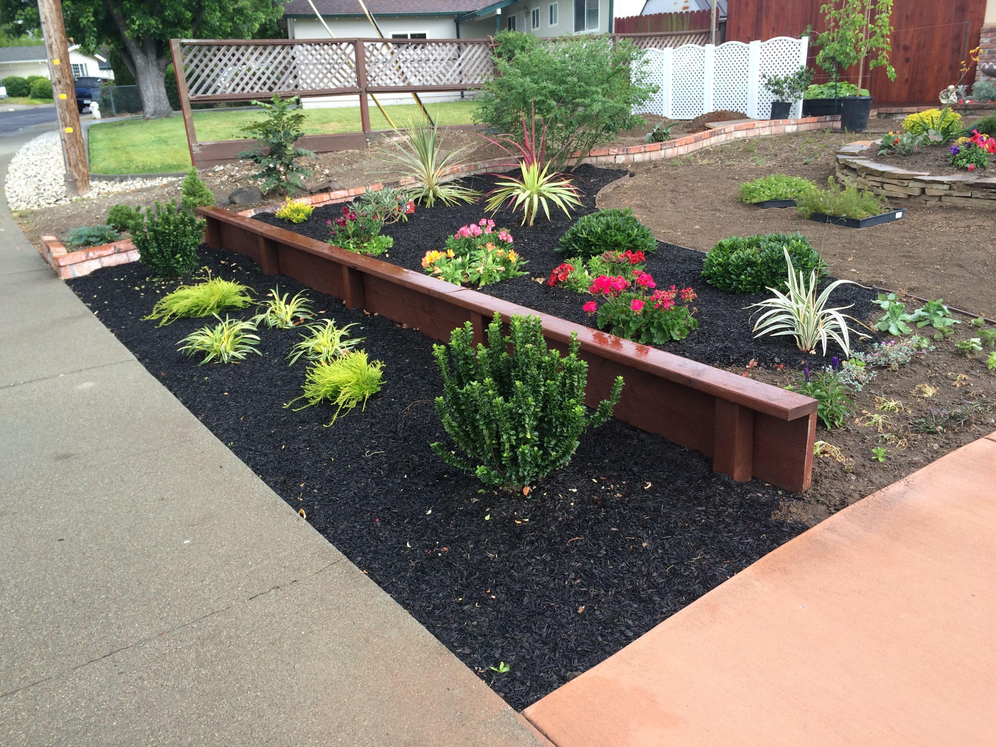 landscape front yard landscaping