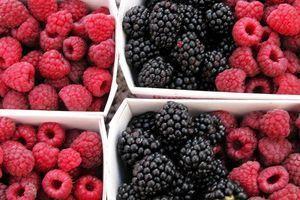 Spuntini Sani E Diabete : Alimentos buenos para la diabetes bayas revierta su diabetes