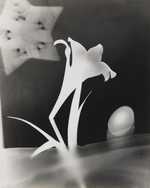 by György Kepes, Lily and Egg, c.1939