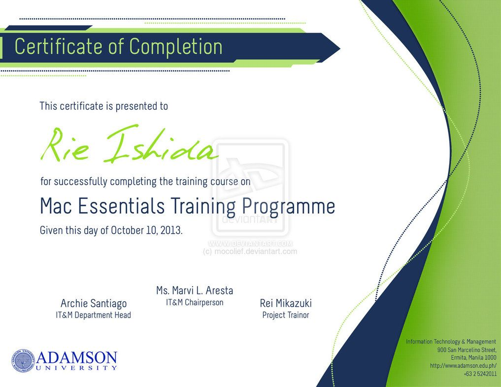 Sample Certificate Of Training Completion 23 Training – Sample Certificate of Training Completion