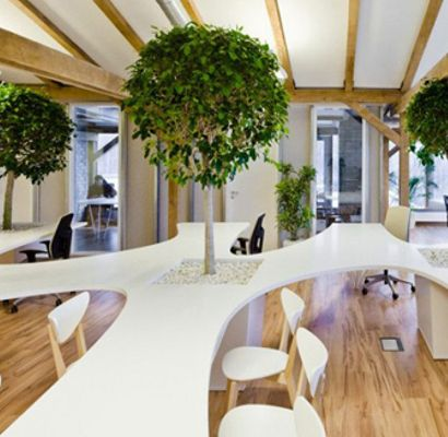 Office Building Uses Trees And Potted Plants To Keep The People Working In It Hy
