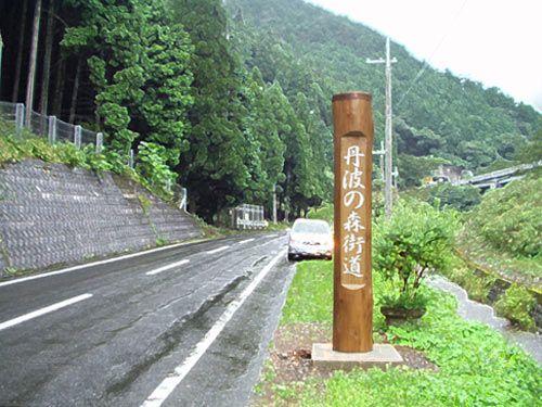 国道427号線の道端に立つ杉丸太材の標柱。(2007.09)