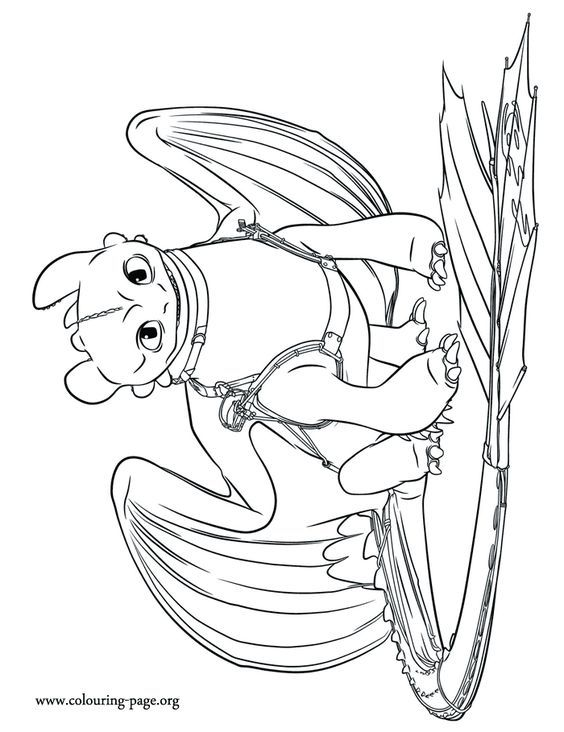 Pin By Melanie Carroll On Cc Dragon Coloring Page How Train Your Dragon Dragon Pictures