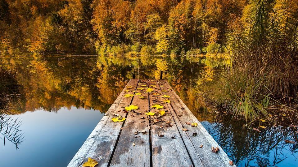 Doğadan - natura - Beautiful World ............ berussa