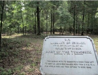 Modern view of Lauman's third position on Sunday, April 6, 1862. This marker is found on a trail leading toward the river east of Wicker Field. A good hunter will spot the young doe between the forks of the small tree in front of the sign. Then imagine the doe is a Confederate rifleman in the sights of your black powder musket.