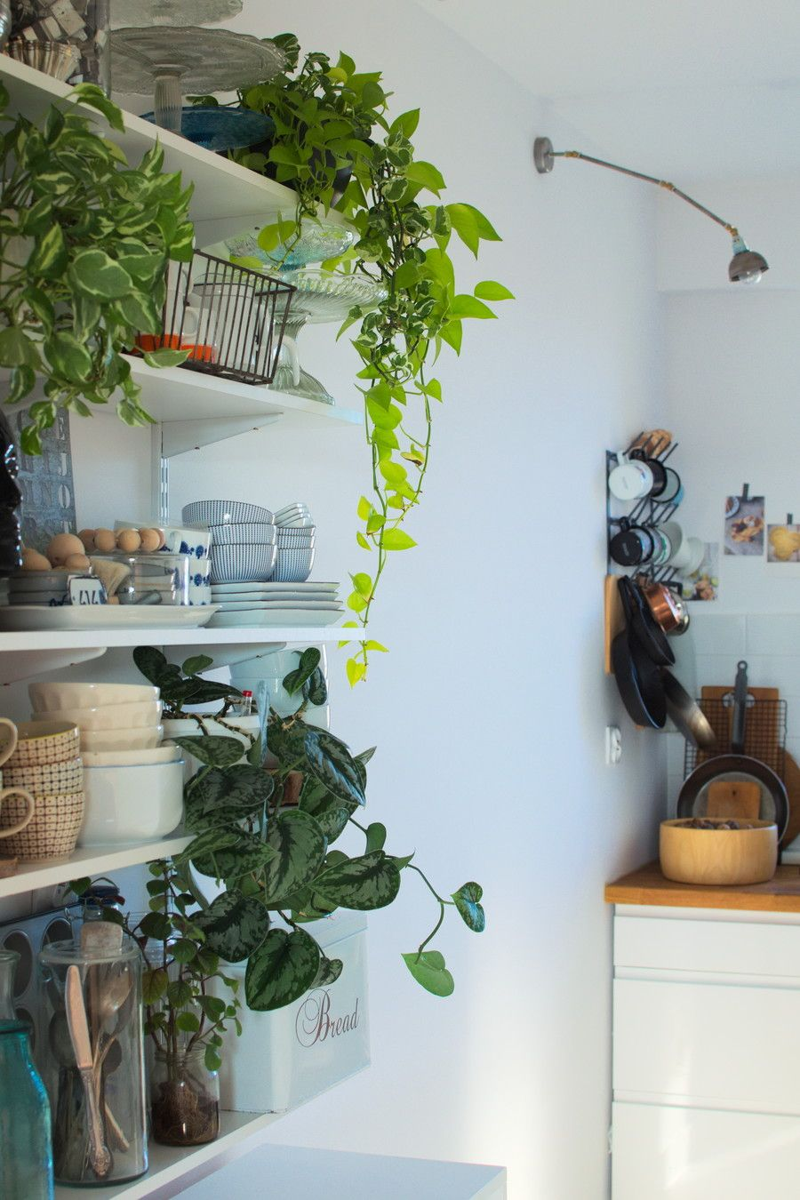 Urban Jungle Bloggers: Kitchen Greens by Papierowy wymiar | kitchen ...