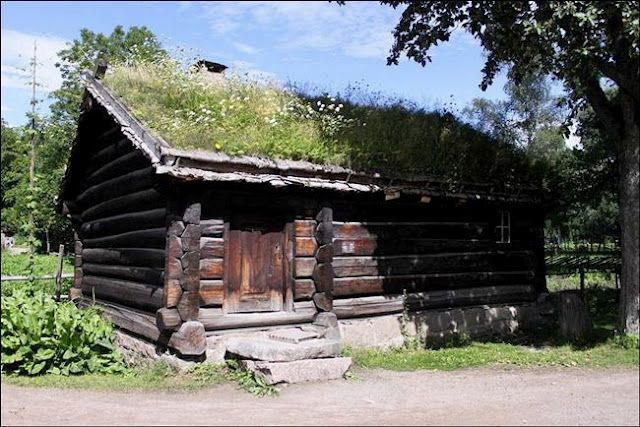 Montana Community Moves Forward With Plans For A Tiny: Log Cabin, Grass Roof
