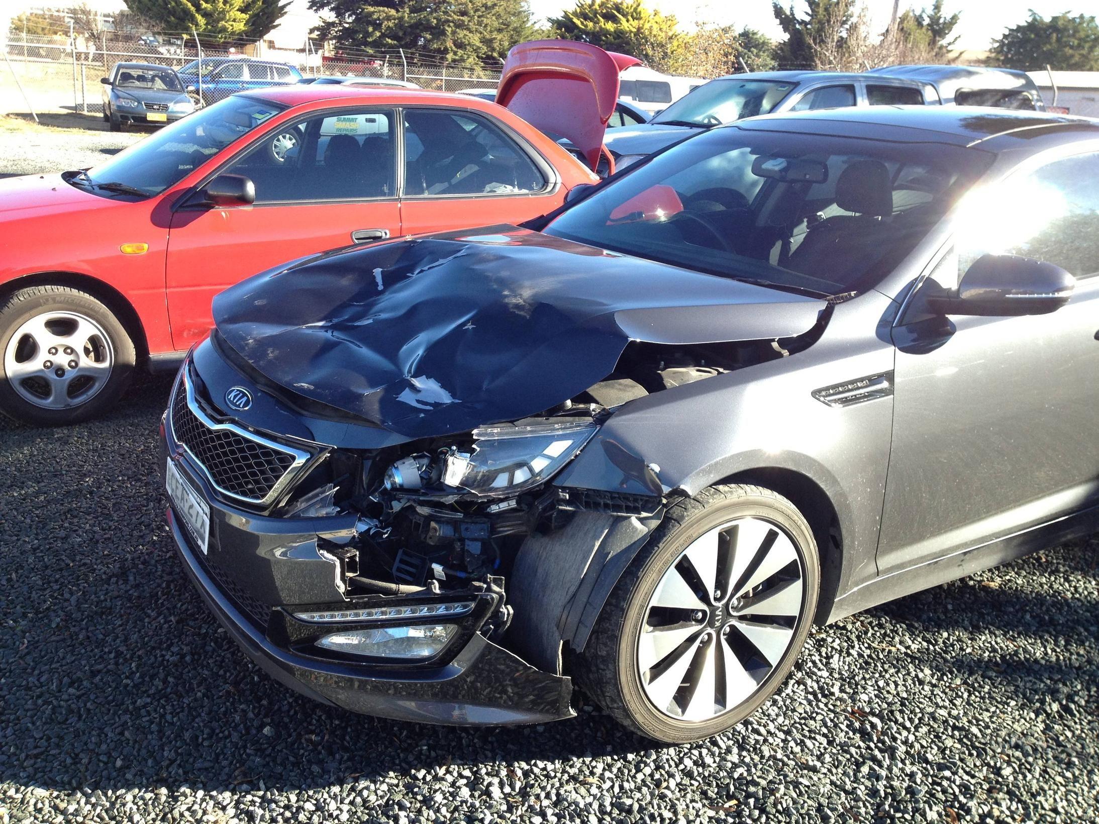 kangaroo damage to car - Kangaroos have been a big problem this year, this is
