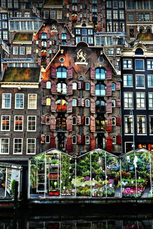 ginvandegreif:Amsterdam