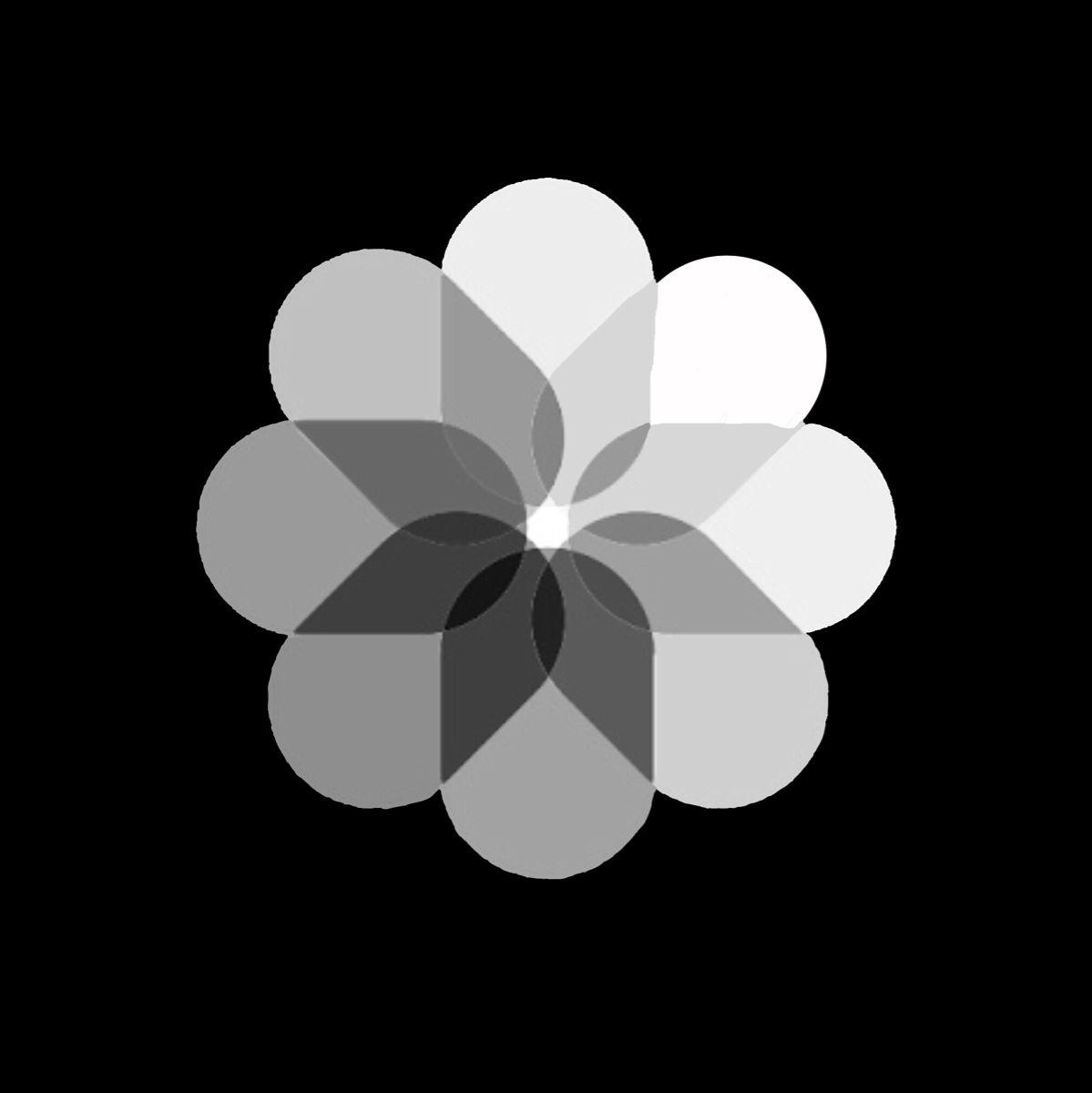 Black Photos Logo Wallpaper Iphone Neon Iphone Photo App Iphone Wallpaper Ios