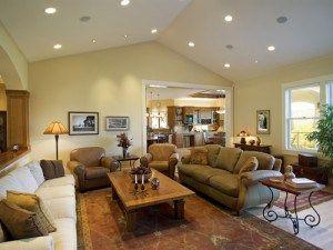 smart home automation rako lighting