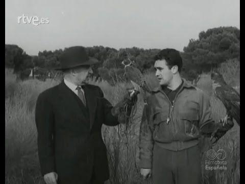 Cetrería con Félix Rodríguez de la Fuente (incluye imágenes inéditas).