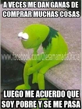 Humor Y Risa Memes De La Rana Frases Para Cuñadas Rana Rene