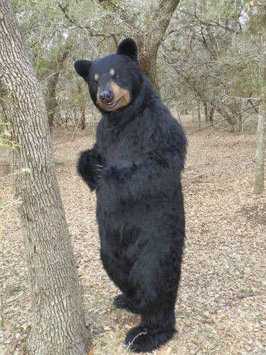 A Realistic Bear Costume.
