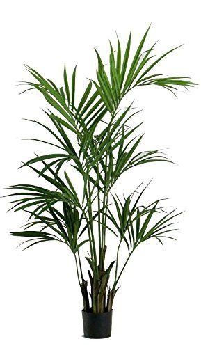 Piante Da Appartamento Amazon.Kentia Palm Elegance Luxe Artificiale H 150 Cm Newgreen Http