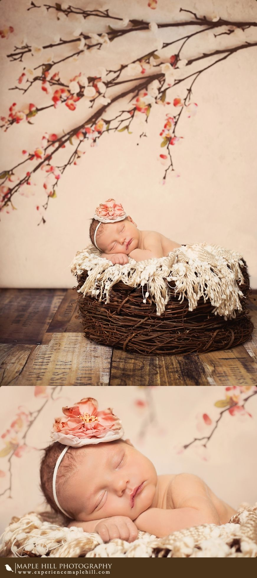 "Newborn photo shoot! I like the idea of stacking wreaths to make a ""nest"" so cute!"