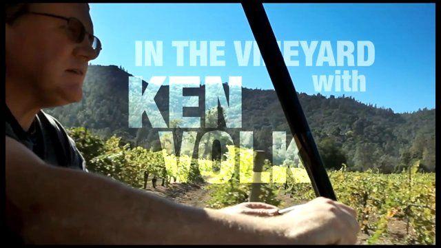 Ken Volk - Portuguese Grape on Vimeo
