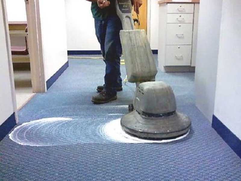 Carpetshampooing carpetcleaning carpetcleaningmelbourne