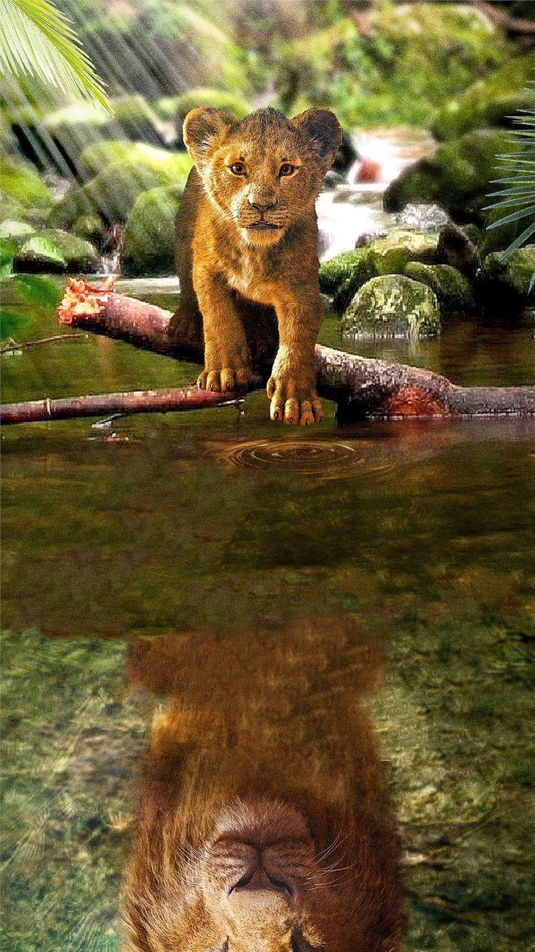 Pin On Simba The Lion King