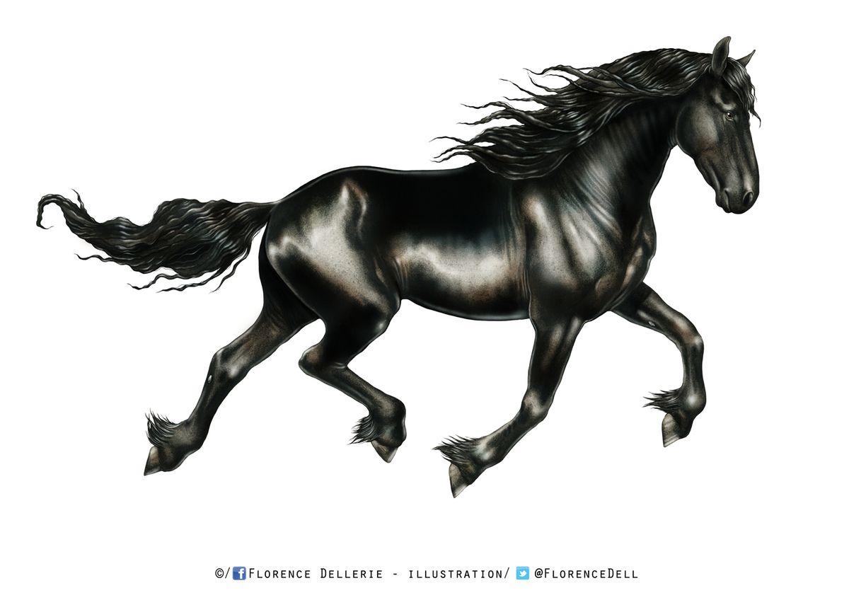 Coloriage de cheval frison a imprimer imprimer et obtenir une coloriage gratuit ici - Frison qui saute ...