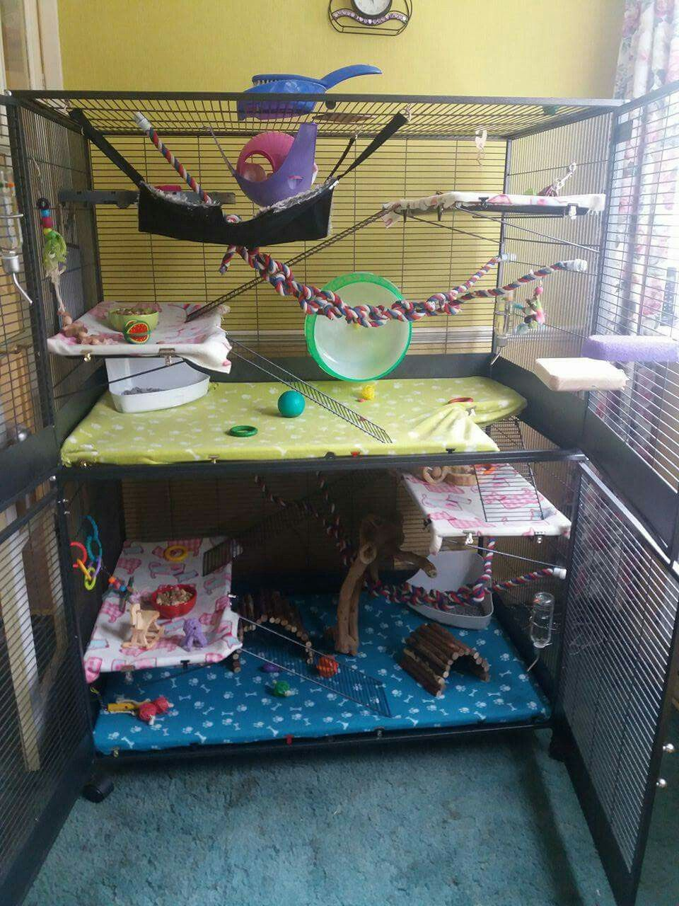 Savic Royal Suite Xl Rat Cage Need More Inspo For Decoration