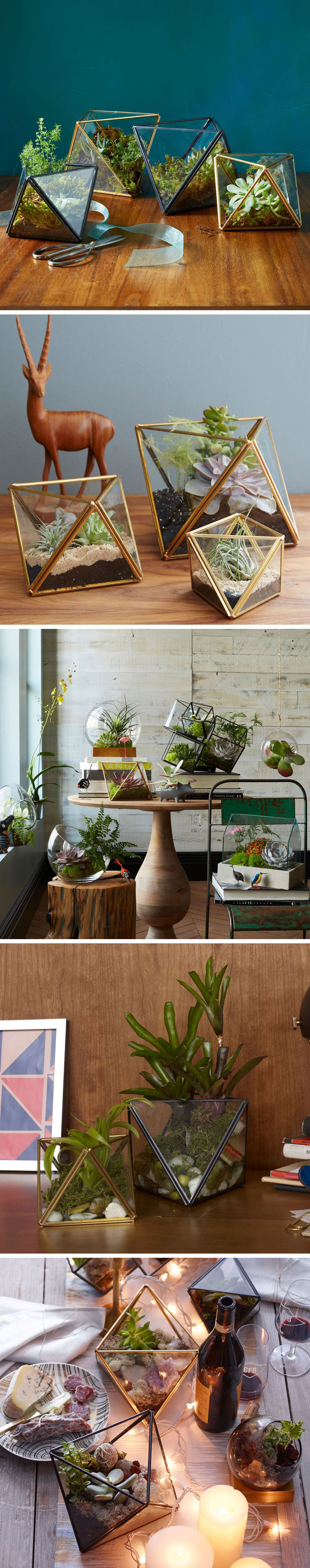 High Quality INSPIRATION :: What Gorgeous Terrrarium Ideas! All Terrariums From West  Elm. CLICK For