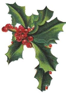 Christmas Holly Clipart Free.Pin On Crafts